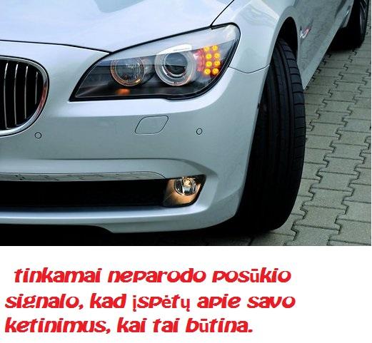 file42697559_ee60c356